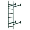 Лестница стеновая  ELITE 400: Зелёный мох - Ral 6005
