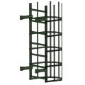 Лестница пожарная П1-2: Злелёный хром - Ral 6020