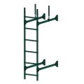 Лестница стеновая PRESTIGE : Зелёный мох - Ral 6005